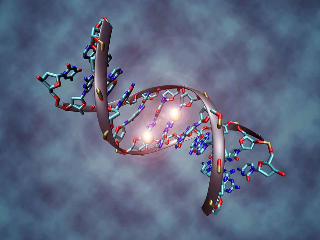 Epigenetics, Meditation and Massage – by Norriah Mease