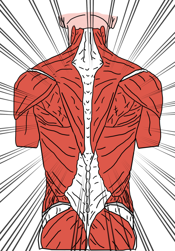 back pain relief options
